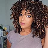 AISI QUEENS Short Curly Wigs for Women Dark Brown Afro Kinky Curly Wig with Bangs Fluffy Synthetic Afro Curly Hair Wigs Heat Resistant for Daily Party Use