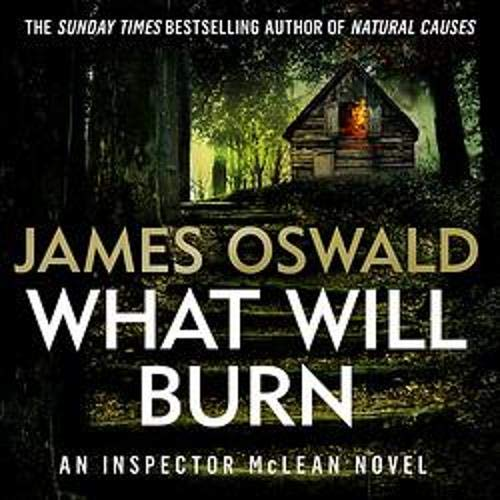 What Will Burn Audiobook By James Oswald cover art