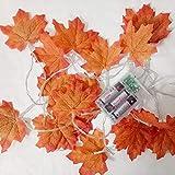 24 LEDs Ahornblatt Baum Licht, 50cm Schreibtisch Ahorn-Blätter (Herbst) Baumlicht Warmweiß,Herbst Dekoration Blätter Lichterketten für Thanksgiving, Weihnachten, Innen Deko - 10