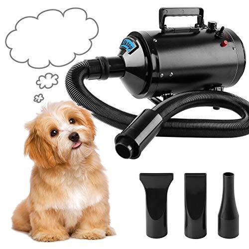 BAODE Secador de Pelo para Perros Gatos Mascotas soplador Secador de Pelo de Belleza para Mascotas Potencia (2400W)