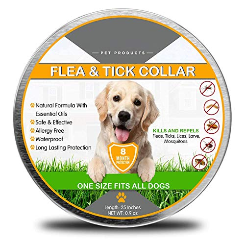 Flea and Tick Collar for Dogs, 8 Months Effective Protection Waterproof Dog Anti Flea Collar, adjustable length 25 inches Fits for Small Medium Large Pets