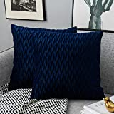 Yamonic Pack of 2 Cushion Cover Super Soft Velvet Pillow Covers Square Decorative Pillowcase for Sofa Bed Couch Bench, 20 x 20 inch, Navy Blue