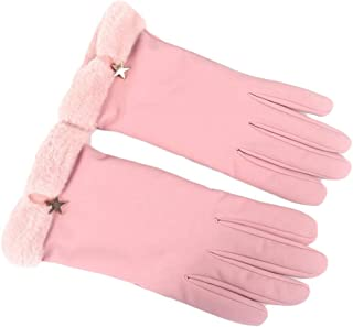 WUXiaodanDan Women's gloves plus velvet thickening gloves windproof cold gloves warm gloves driving gloves