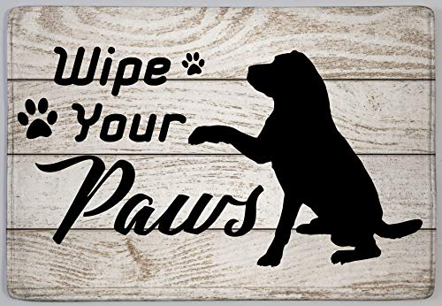 onederful Wipe Your Paws Funny Doormat Mat Flannel Rug for Front Entrance Indoor Bedroom - Non Slip Back Doormat for Office Kitchen Apartment