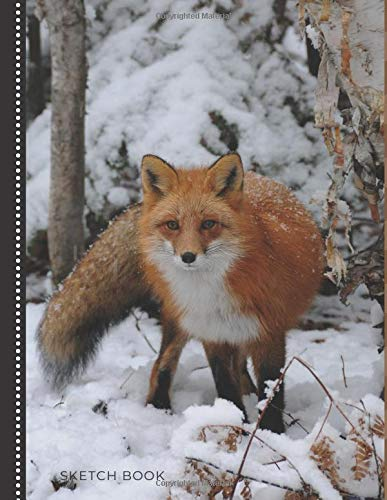 Sketch Book: Unlined Art Notebook for Kids, Teens, and Adults for Drawing, Doodling and Coloring | 108 Blank Pages, 8.5x11 : Cute Fox in the Snow Photo