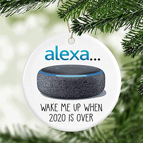 Wini2342ckey Alexa Wake me up When 2020 is Over Ornament,Cute Ideas,2020 Would not Recommend Ornament,2020 Stink Stank Stunk Ornament,Christmas Decor Gift