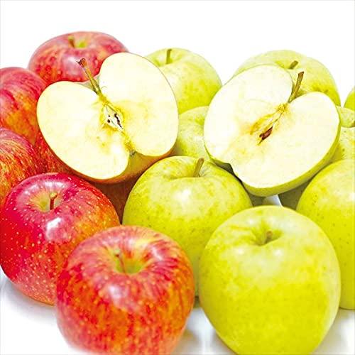 国華園 りんご 選べる欲張りりんご Eセット【サンふじ・王林】 2種10�s(各5kg)1組 食品