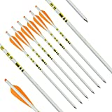 HANDBAIGE 6Pcs Carbon Crossbow Bolt Archery 20 Inch Target Hunting Practice Crossbow Arrows