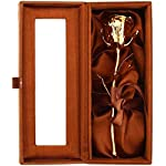 billion deals 24k gold dipped natural rose with brown beautiful gift box men & women best gift on valentine day, anniversary,birthday and thanksgiving gift