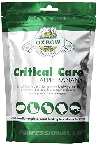 Herbivore Critical Care OXBOW Apple Banana Animal Supplement Feed Formula 454g