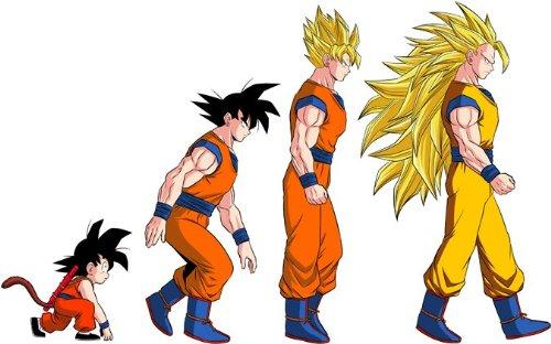 T-Shirt Manga - Parodie Dragon Ball Z / DBZ - La Théorie de l'évolution :) - T-shirt Homme Noir - Haute Qualité (631) - Large