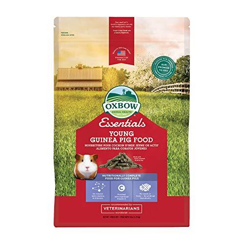 Oxbow Essentials Young Guinea Pig Food - All Natural Guinea Pig Pellets - 5 lb. Alaska
