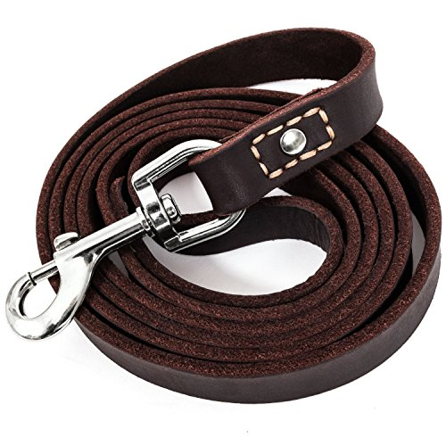 LEATHERBERG Leather Dog Training Leash - Brown 6 Foot x 3/4' Dog Walking Leash Best for Medium Large Dogs, Latigo Leather Dog Lead & Puppy Trainer Leash