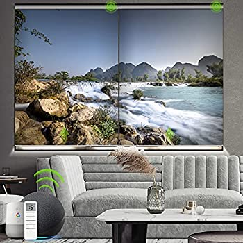 Yoolax Motorized Roller Shade with Pictures Blackout Smart Window Blinds Works with Alexa Customized Size and Photo Electric Blinds with Remote Control and Power Motor for Home Office  River