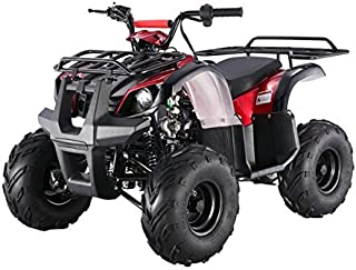 Safer Wholsale Model # 125D is a 110cc   Utility 4 Stroke Fully Auto ATV with REVERSE - Choose Your Color