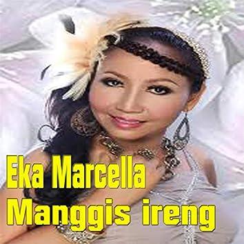 Manggis Ireng