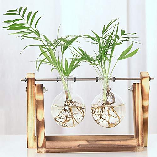 Creatieve transparante glazen bolvormige vaas met vintage houten beugels voor hydrocultuurplanten, luchtplanten, klein en prachtig, eenvoudig en stijlvol, verfraaid met leven,M