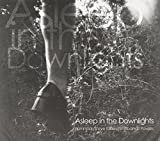 Asleep in the Downlights by Hammock (2011-10-25)