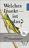 Welches Insekt ist das? - Heiko Bellmann
