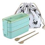 ZITFRI Petite Boîte Lunch Box Bento 900ml Boite a Dejeuner Anti-Fuite Hermétique Boîte Repas pour Micro-Ondes Écologique Boite a Manger Adultes ou Enfants