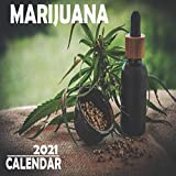 Marijuana Calendar 2021: 16 Month Mini Wall Or Desk Calendar For Office, Home Or School