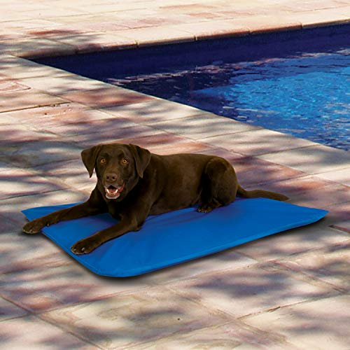 """K&H Pet Products Cool Bed III Cooling Dog Bed Large Blue 32"""" x 44"""""""