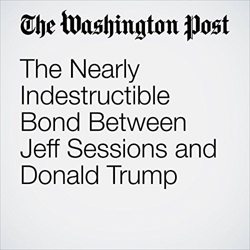 The Nearly Indestructible Bond Between Jeff Sessions and Donald Trump copertina