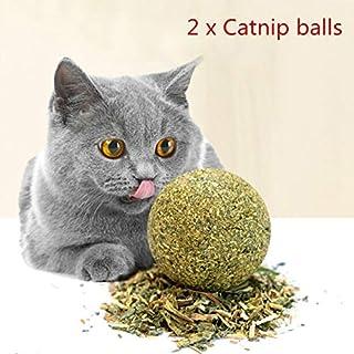 Sahgsa Juguete de Gato con Bola de Hierba gatera, Juguete de Gato para Mascotas Hierba de Menta Juguete de Bola de masticación pequeño para Gatos, 2 Piezas