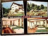 Bodenmais. Café - Restaurant Lydia. Alte Mehrbild AK farbig, ungel. ca1966ger. Gebäudeansicht, 2 x Gastraum Innenansichten, Liegewiese mit vielen Personen.