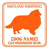 ワラ犬 シェットランドシープドッグ (シェルティー) ステッカー Eパターン ガールブラウン(茶色)