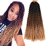AliRobam 18inch Water Wave Ombre Passion Twist Crochet Bohemian Curly Braids Hair Synthetic Passion Twist Braiding Hair Extensions 6packs 22Roots (18INCH Black-dark brown-light brown)