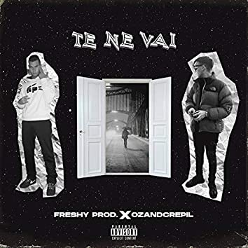 Te Ne Vai (feat. OzAndCrepil)