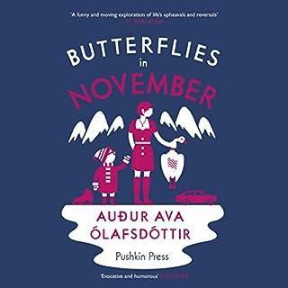 Butterflies in November audiobook cover art