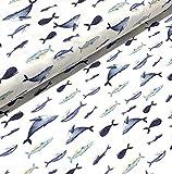 0,5m Jersey Wale auf weiß
