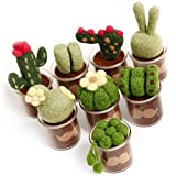 Full Range of Needle Felting Kit, Kissbuty Cactus Wool Felted Set for Adults and Beginners Including Wool Roving for 8 Succulents, Foam Mat, Glass Pots, Needles, Finger Guards Tools Kit