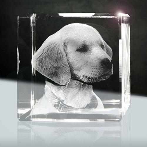 3D Glaslaserfoto | Würfel 50mm | 1 Person oder Tier zB als Geschenk mit deinem lieblings Tier
