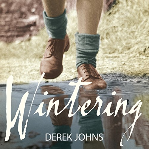 Couverture de Wintering