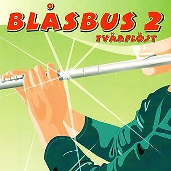 Blåsbus 2 tvärflöjt