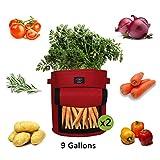 Laxllent Sacs de Plantation de Jardin,2PCS 9 Gallons Sac de Legumes, Tissu Non-tissé Sac de Plantation de Pommes de Terre à Fenêtre (2, Terre Cuite)