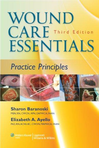 Wound Care Essentials: Practice Principles (Baraonski, Wound Care Essentials)