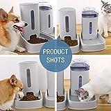 Zoom IMG-1 distributore cibo gatti fontanella e
