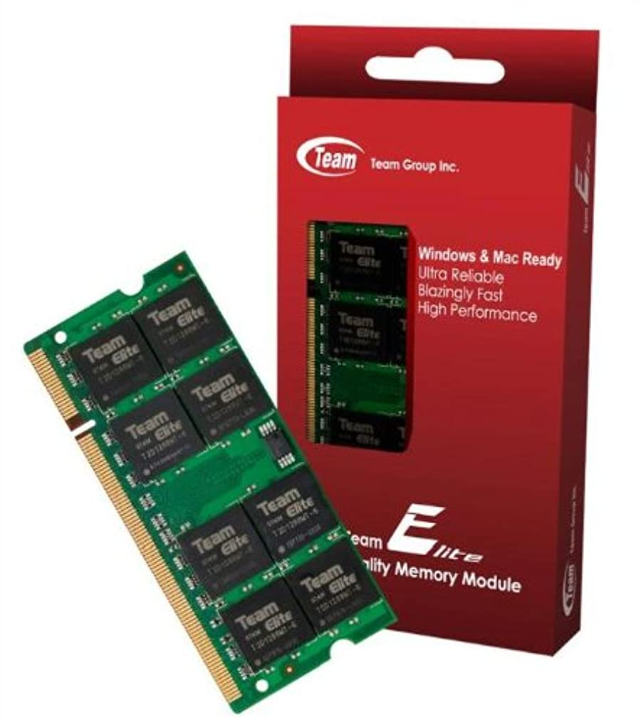 2GB Team High Performance Memory RAM Upgrade Single Stick For HP - Compaq HP 420 Laptop. The Memory Kit comes with Life Time Warranty.