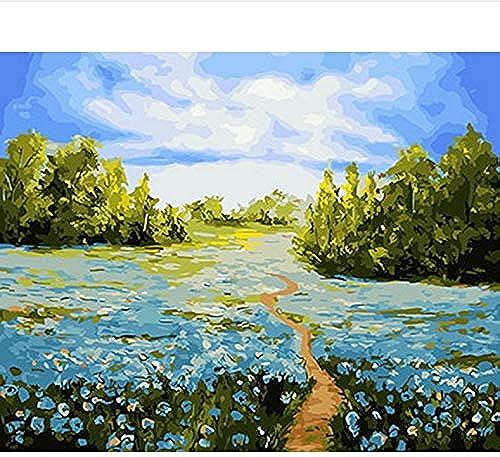 DIY Un Bild  em e Durch Zahlen maßen Nach Zahlen Für Wohnkultur Leinwand Malerei cm Blau Feld, Mit Rahmen, 50x6cm