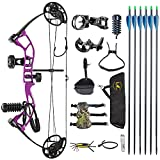 TOPOINT ARCHERY M2 Compound Bow Kit for Teens,Beginners,Junior,DL:17'-27' DW:10-40Lbs Adjustable,IBO:290fps,Axle to Axle 25', Bow Limbs Made in USA,Bow Only 2.54lbs,Lightweight Design (Purple)
