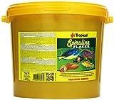 Tropical Spirulina Flakes - Comida Vegetal en Copos con espirulina, 1 Unidad (5 l)