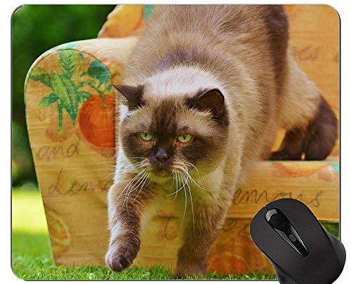 Mausunterlagen, weiße gelbe Tierhaustier-Spiel-Mausunterlage, Sofa-Mausunterlage mit genähtem Rand