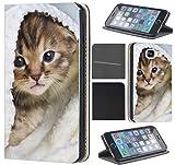Huawei P20 Lite Hülle von CoverHeld Premium Flipcover Schutzhülle Flip Hülle Motiv (1312 Katzenbaby Kätzchen Katze Tier süß)
