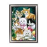 Kofun DIY gatos lindos 5d Diamond pintura cristal bordado Artesanía Arte de punto de cruz Craft Home habitación decoración de la pared 30x 40cm