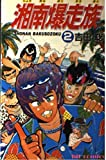湘南爆走族 (2) (ヒットコミックス (436))