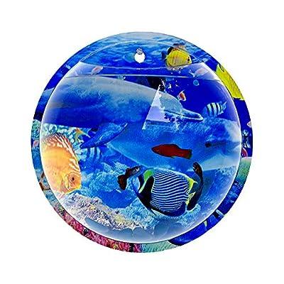 Dayyly Wandhängende Fischschale aus Acryl, rund, Wandmontage, zum Aufhängen, für Aquarien, Goldfische und Beta-Fischpflanze, Dekoration für Zuhause, transparent